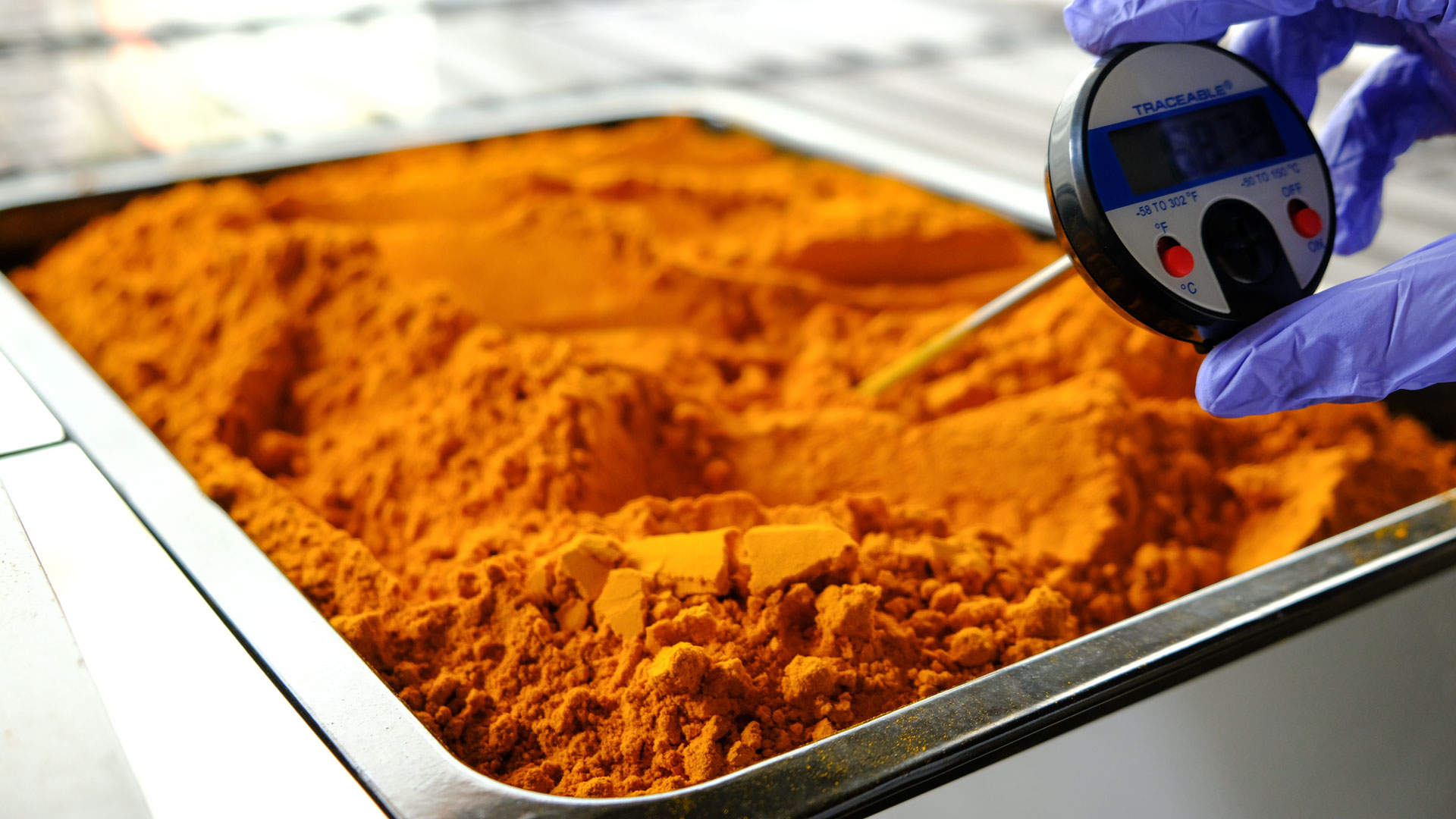 Golden East Drive Labs: Minced And Grinded Turmeric Being Tested To Be Processed